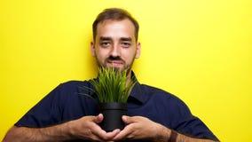 Equipaggi sorridere alla macchina fotografica e la mostra del vaso con erba verde archivi video