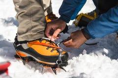 Equipaggia gli aiuti che delle mani installate e che vestite i ramponi dell'alpinista Fotografia Stock Libera da Diritti