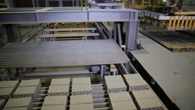 Equipamento automatizado da maquinaria Produtos de montagem do braço robótico, tijolos video estoque