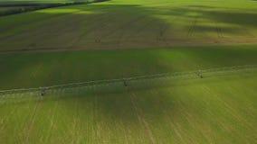 Equipamento automatizado moderno da irrigação que molha o campo recentemente semeado Irrigação da terra para assegurar a qualidad video estoque
