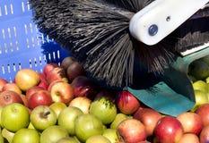 Equipamento de colheita para maçãs imagem de stock royalty free