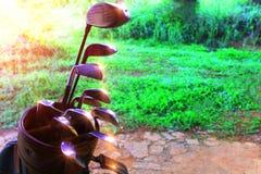 Equipamento de golfe muitas partes em um saco imagem de stock royalty free