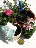 Equipamento de jardim, isolado foto de stock royalty free
