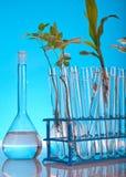 Equipamento de laboratório Imagem de Stock