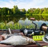 Equipamento de pesca e peixes travados na tabela imagens de stock royalty free
