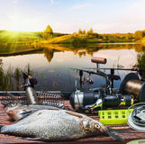 Equipamento de pesca e peixes travados na tabela imagens de stock