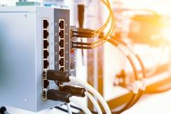 Equipamento de rede moderno, interruptor de alta velocidade Os cabos da rede são introduzidos na unidade fotos de stock royalty free