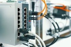 Equipamento de rede moderno, interruptor de alta velocidade Os cabos da rede s?o introduzidos na unidade foto de stock royalty free