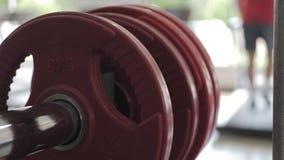 Equipamento de treino do peso do Gym e do peso no esporte, equipamentos saudáveis do exercício da vida e do gym e conceito dos es vídeos de arquivo