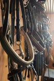 Equipamento do cavalo na luz solar Foto de Stock Royalty Free