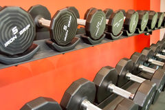 Equipamento do gym dos Barbells Foto de Stock Royalty Free