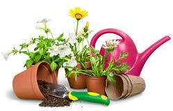 Equipamento e flores de jardinagem isolados no branco foto de stock royalty free