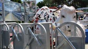 Equipamento para a manutenção, a limpeza e as vacas de ordenha filme