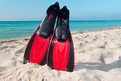 Equipamento Snorkeling em Imagens de Stock Royalty Free