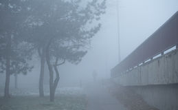 Equipe andando na rua um o dia nevoento Fotografia de Stock