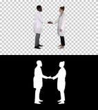 Equipe bem sucedida dos cirurgiões que dão altamente cinco e do riso isolado no fundo branco, Alpha Channel fotos de stock
