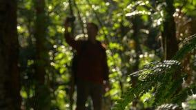 Equipe a caminhada através de Forest Outdoors Day que toma fotos do selfie no telefone vídeos de arquivo