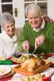 Equipe a cinzeladura da galinha quando sua esposa que tem o braço em torno dele Foto de Stock