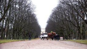 A equipe com o transporte leva turistas no parque video estoque
