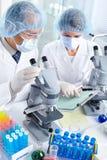 Equipe da ciência Imagem de Stock