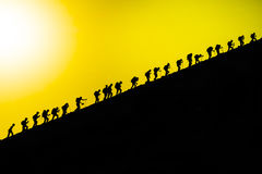Equipe de escalada máxima