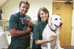 Equipe de funcionários de Vetinary com cão e gato na cirurgia fotografia de stock royalty free