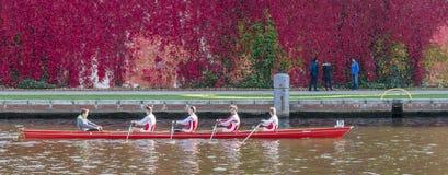 Equipe do enfileiramento - quatro coxed que treinam Foto de Stock Royalty Free