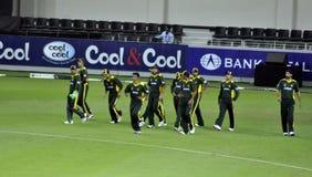 Equipe do grilo de Paquistão Fotografia de Stock