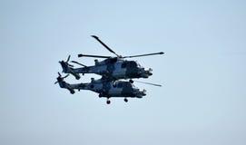 Equipe do indicador do helicóptero dos gatos pretos Foto de Stock Royalty Free