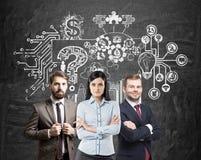 Equipe do negócio e um esquema da resolução de problemas Foto de Stock Royalty Free