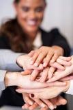 Equipe do negócio que empilha as mãos Fotos de Stock Royalty Free