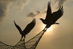 Equipe do pássaro fotografia de stock