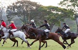 Equipe do polo no jogo de Brasil Foto de Stock