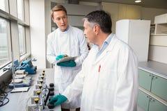 Equipe dos cientistas que trabalham junto Foto de Stock Royalty Free