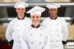Equipe dos cozinheiros chefe Fotografia de Stock Royalty Free