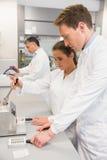 Equipe dos farmacêuticos que usam a imprensa para fazer comprimidos Fotografia de Stock Royalty Free