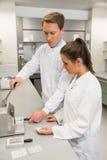 Equipe dos farmacêuticos que usam a imprensa para fazer comprimidos Imagem de Stock Royalty Free