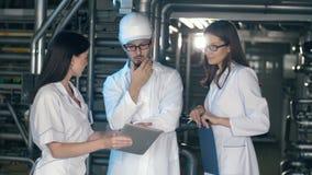 Equipe dos inspetores que trabalham na fábrica do óleo filme