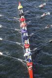 Equipe dos Rowers masculinos Fotos de Stock Royalty Free