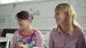 Equipe fêmea durante o almoço em um café As mulheres no café discutem os próximos feriados Chá da bebida das meninas dos copos de vídeos de arquivo