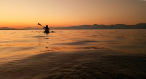 equipe fazer a canoa no por do sol no oceano imagens de stock