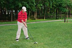 Equipe Golfing Imagem de Stock Royalty Free