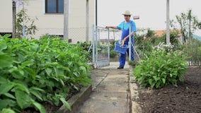 Equipe ir jardinar para pegarar o vegetal video estoque