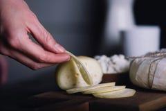 Equipe a mão do ` s que guarda a parte de queijo Fotos de Stock Royalty Free