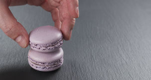 Equipe a mão que empilha macarons da alfazema na placa da ardósia Imagens de Stock Royalty Free