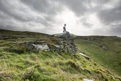 Equipe o assento em uma rocha em um campo litoral grande Imagem de Stock