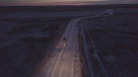 Equipe o corredor ao longo da estrada do inverno com o cão e o carro que movem-se atrás deles video estoque