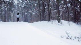 Equipe o corredor na estrada coberto de neve do inverno na floresta vídeos de arquivo