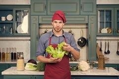 Equipe o cozinheiro chefe no chapéu vermelho, folhas da salada verde da posse do avental imagem de stock