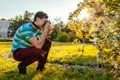 Equipe o fotógrafo que toma imagens das flores no parque no por do sol O indivíduo novo aprecia seu passatempo fora Fotos de Stock